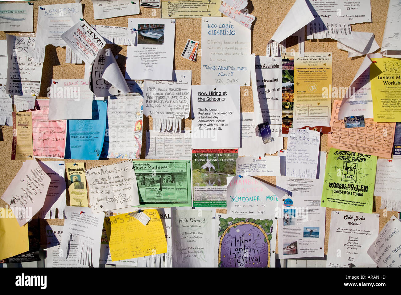 Notices and messages pinned to cork board Tofino Vancouver island Canada - Stock Image