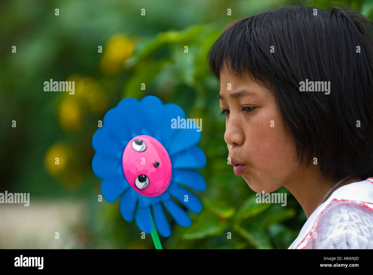 Young Chinese girl plays with pinwheel, Long Lake Town, Shilin County, Yunnan Province, China. - Stock Image