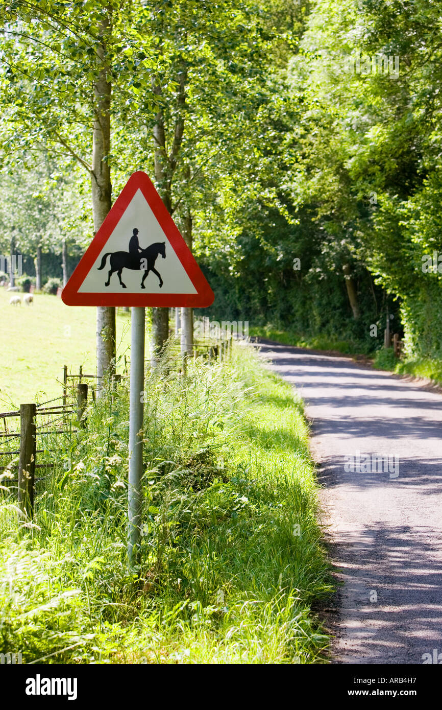Roadside sign warning of accompanied horses or ponies Dorset UK - Stock Image