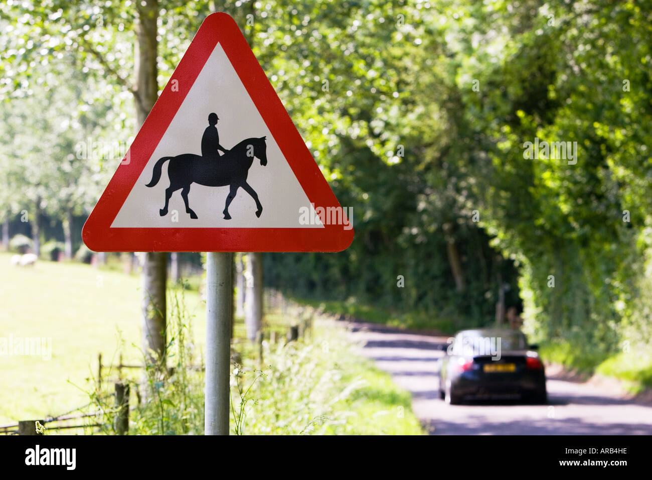 Car passes sign by roadside warning of accompanied horses or ponies Dorset UK - Stock Image