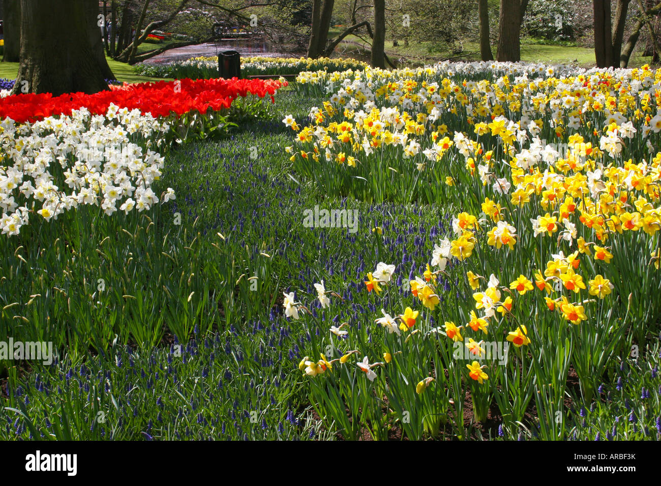 Many Different Types Of Flowers Are On Display During Spring In