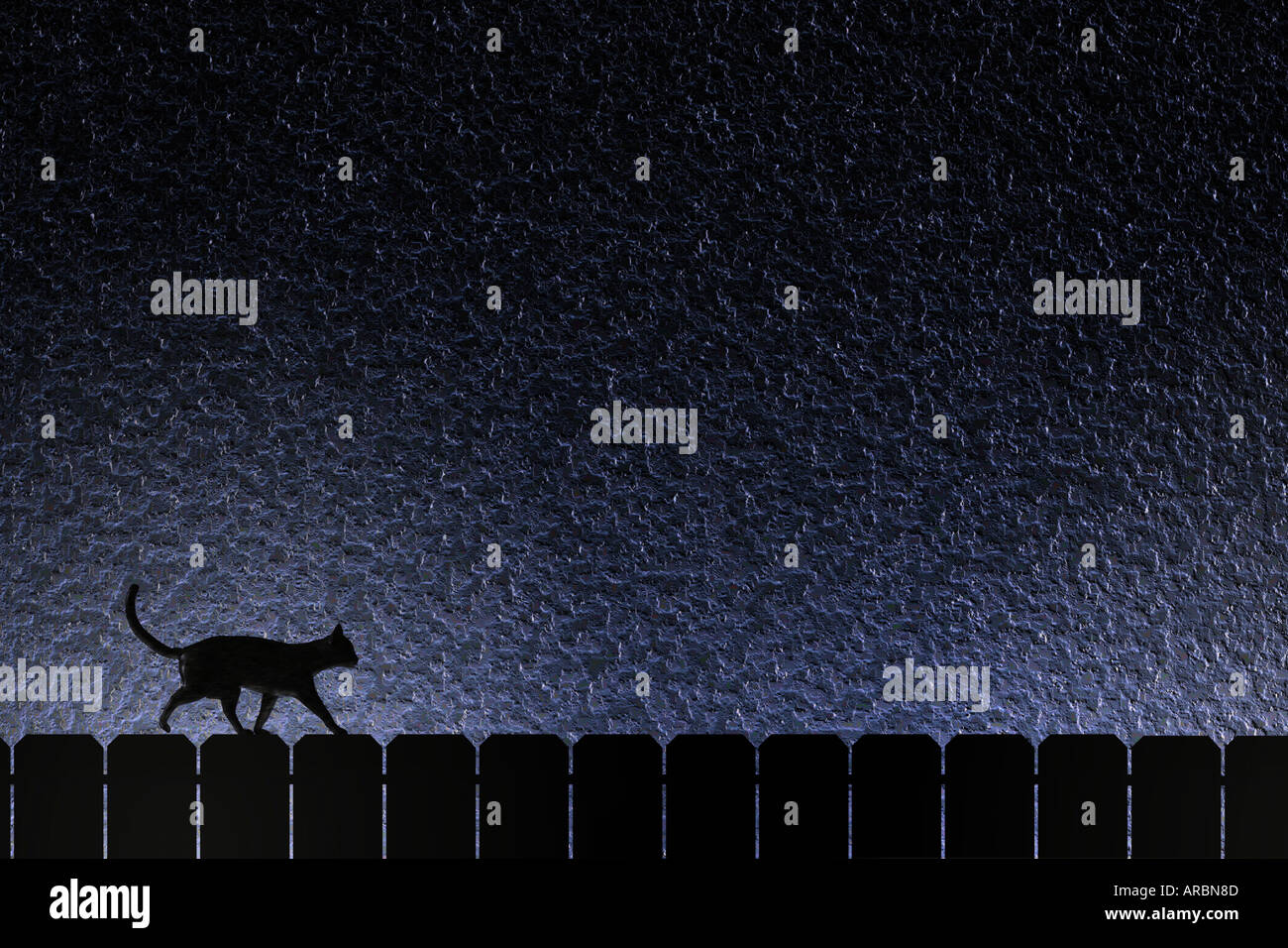 Cat on a fence - Stock Image