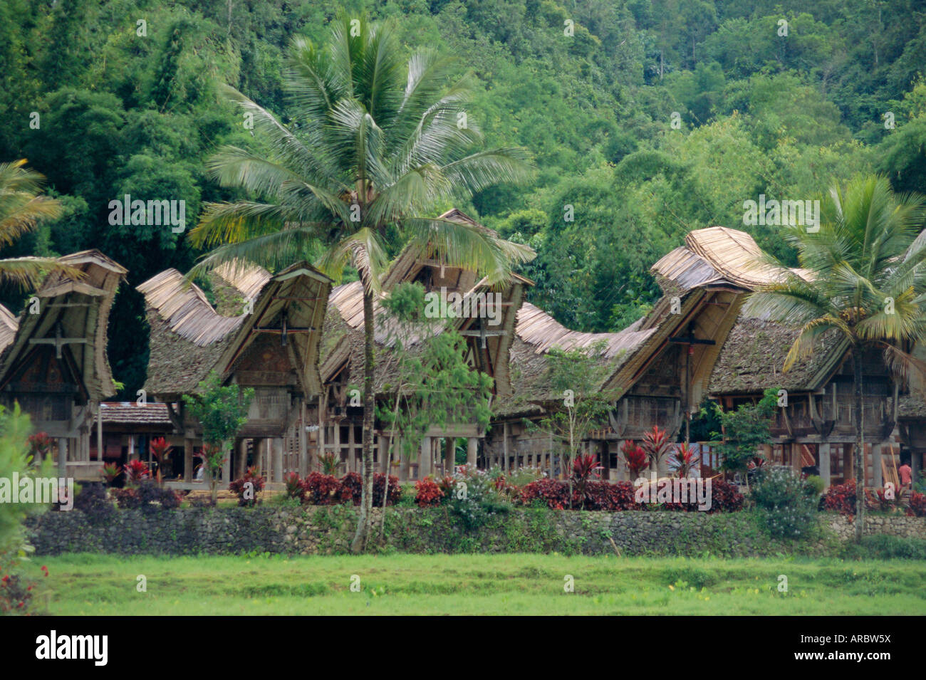 Traditional village, Kete Kesu, Torajaland, Sulawesi, Indonesia - Stock Image