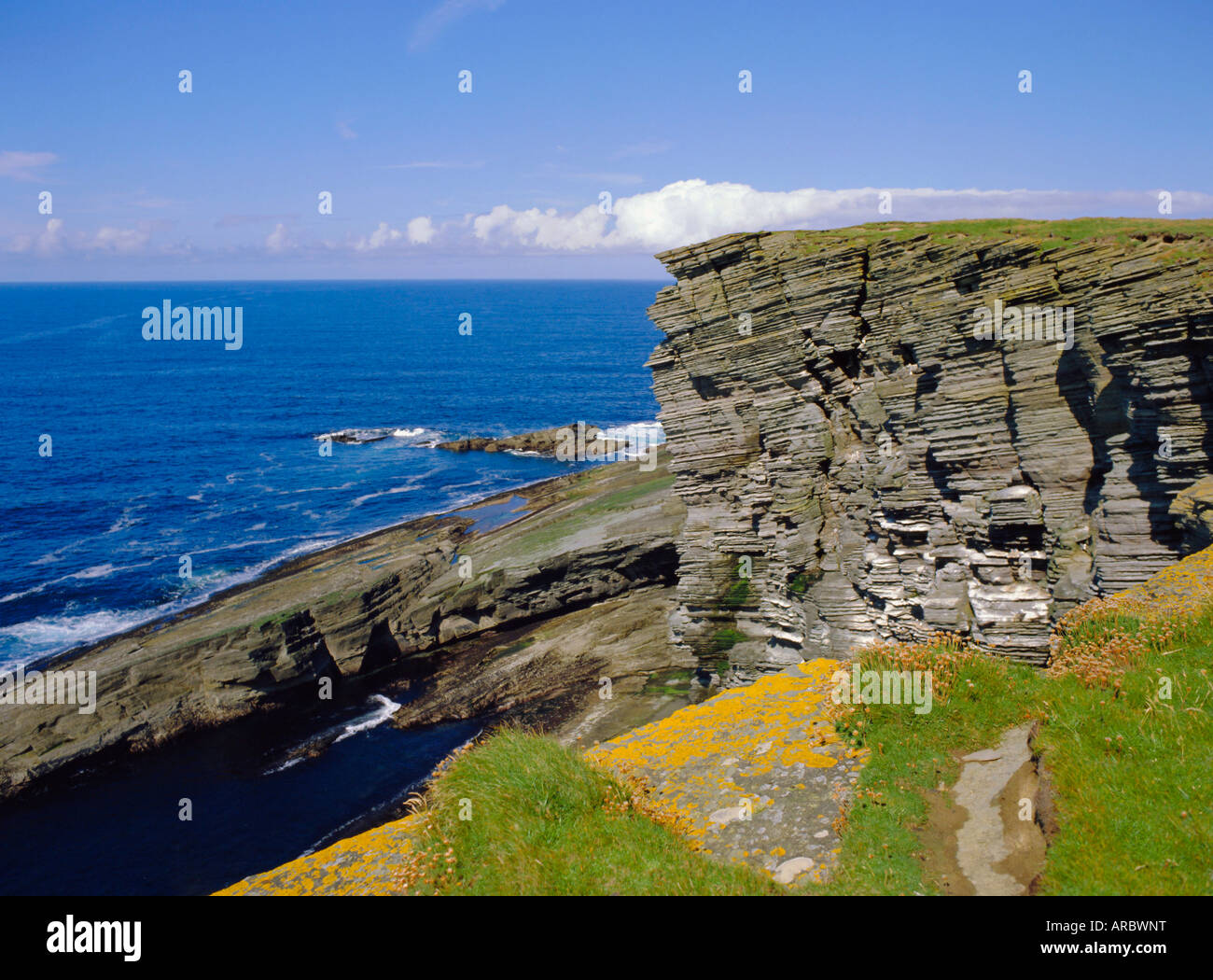 Cliffs at Brough of Birsay off the Mainland, Orkney Islands, Scotland, UK, Europe - Stock Image