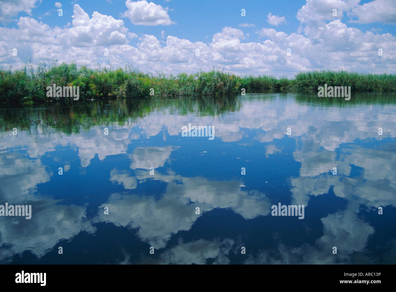 Okavango Delta, Botswana, Africa - Stock Image