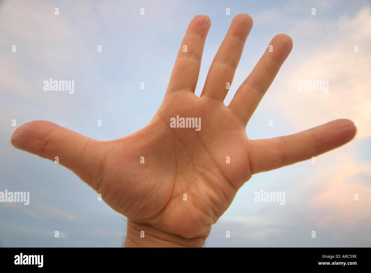 Miami Beach Florida left hand palm fingers thumb sky white male - Stock Image