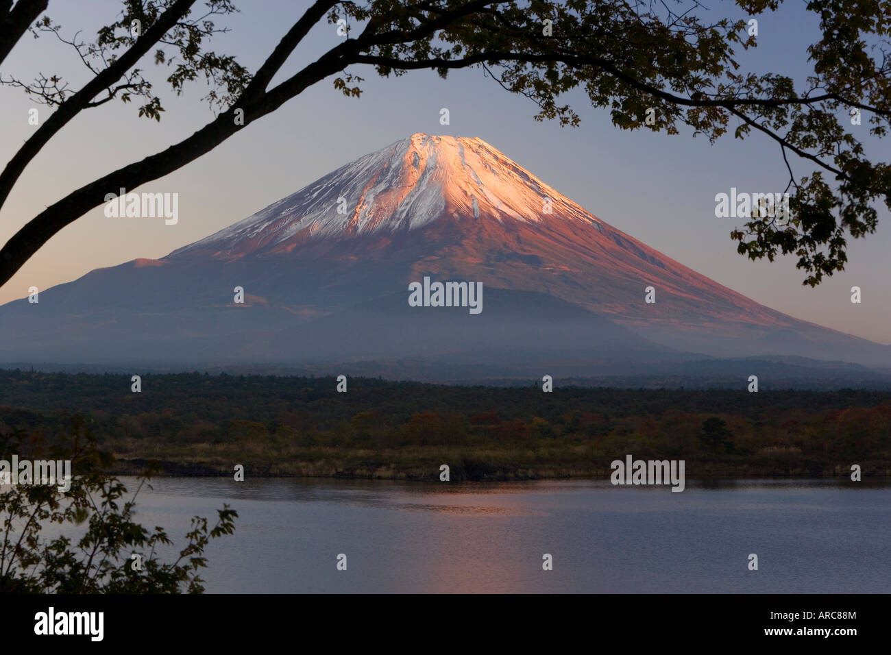 Lake Shoji-ko and Mount Fuji in evening light, Fuji-Hakone-Izu National Park, Honshu, Japan, Asia - Stock Image