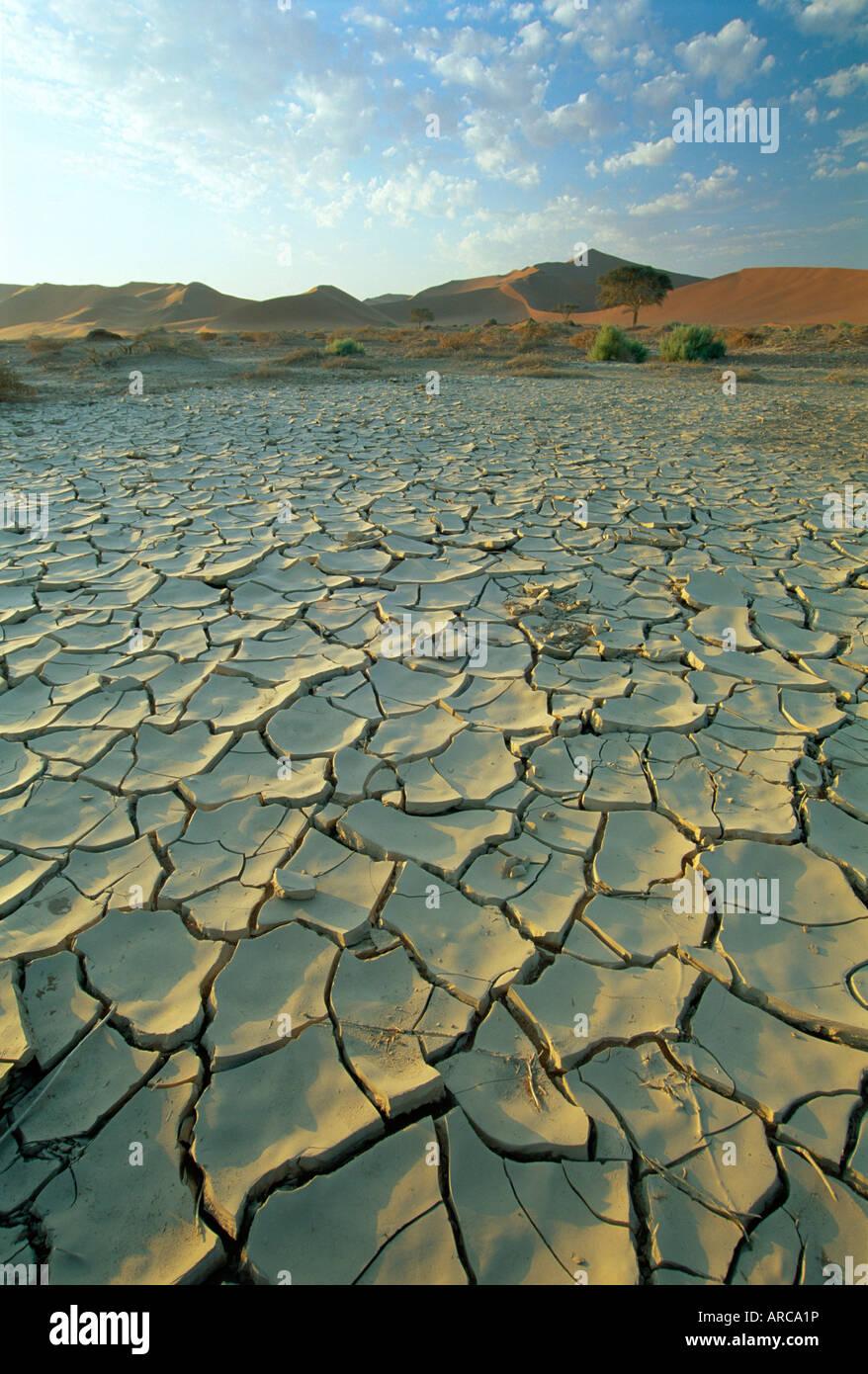 Sunbaked mud pan/cracked earth, near Sossusvlei, Namib Naukluft Park, Namibia, Africa - Stock Image