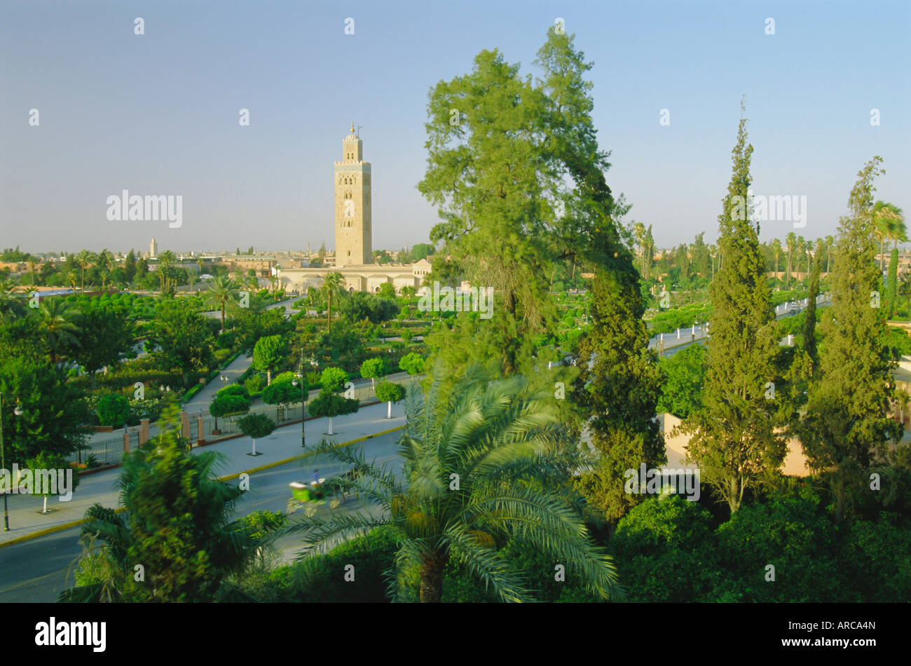 The Koutoubia minaret on the skyline of Marrakech (Marrakesh), Morocco, North Africa, Africa - Stock Image