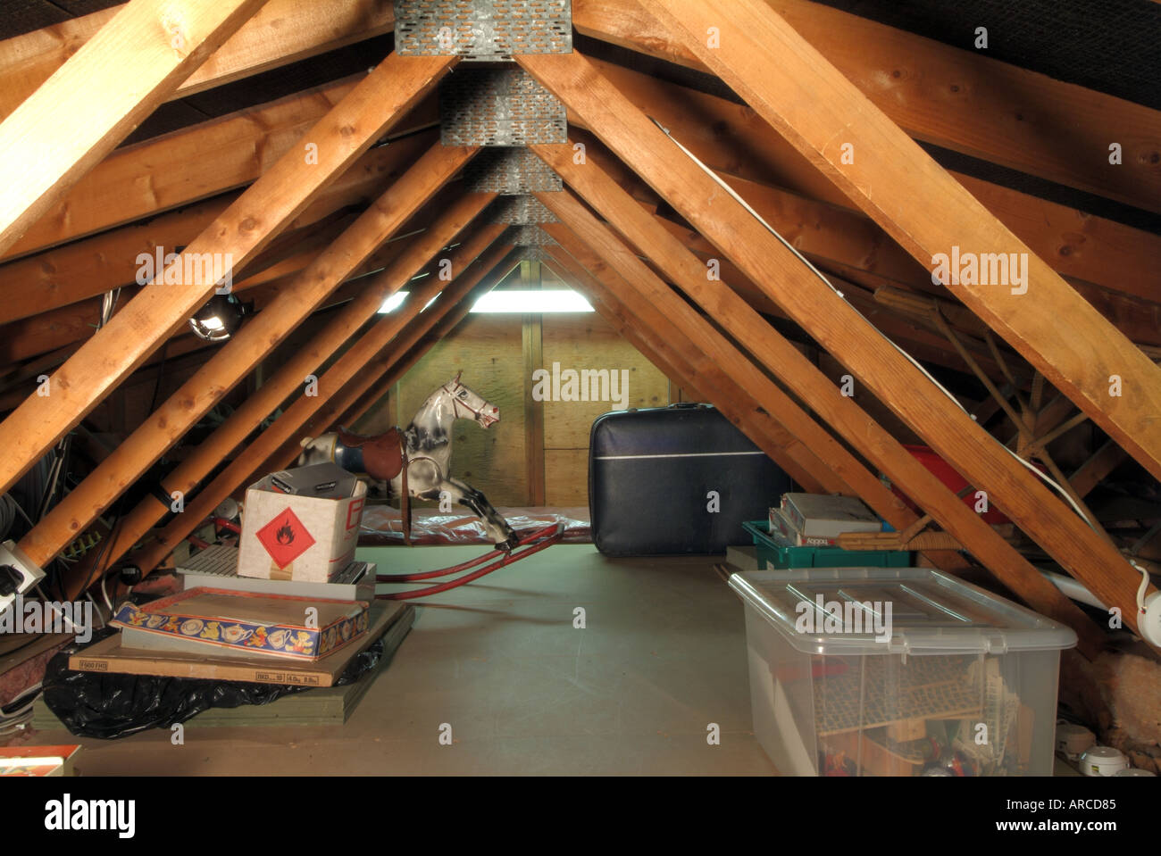attic storage ideas with trusses - Domestic dwelling loft space low roof pitch showing timber