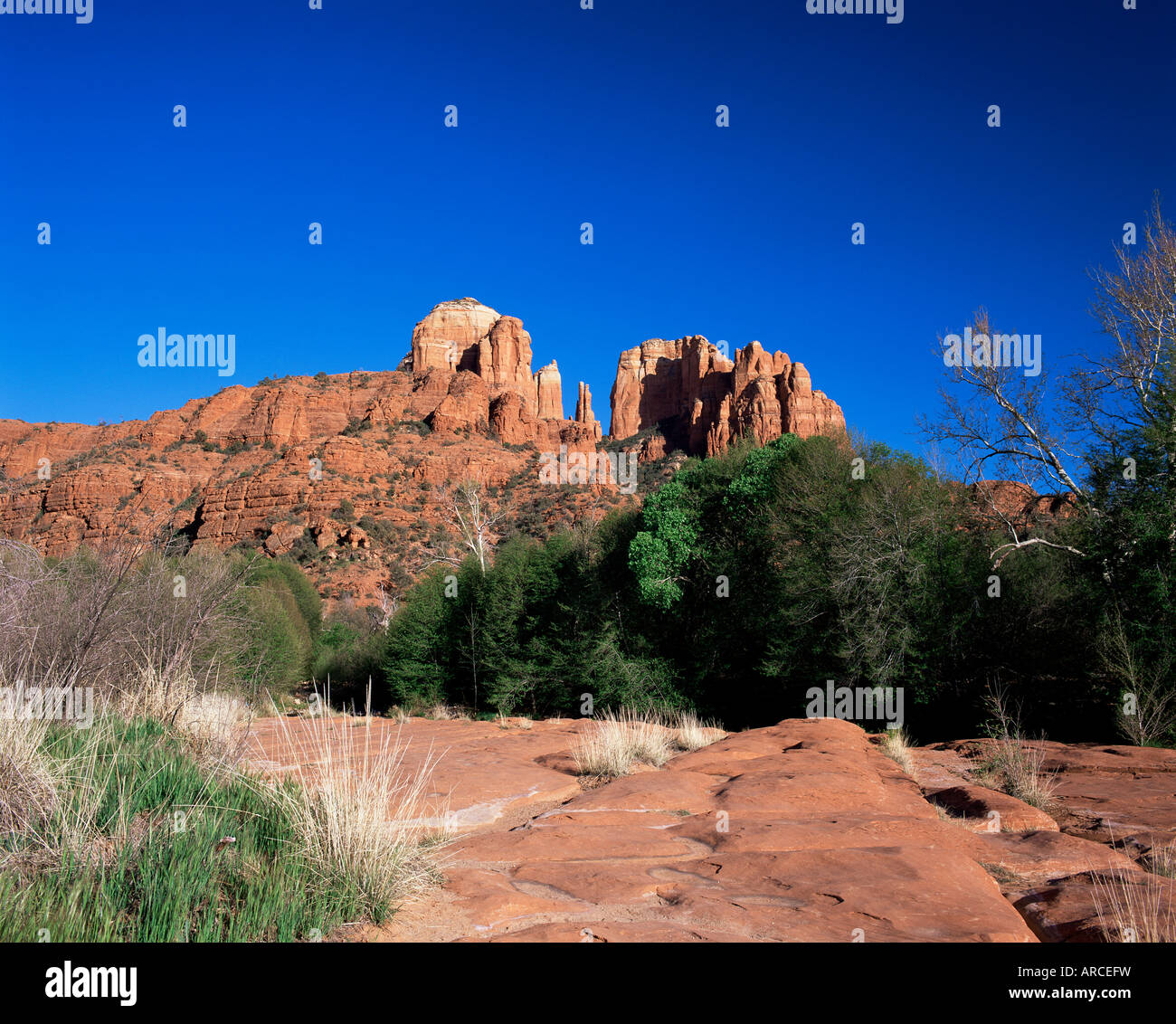 Cathedral Rock, considered a vortex by New Age metaphysicists, in the evening light, Sedona, Arizona, USA - Stock Image