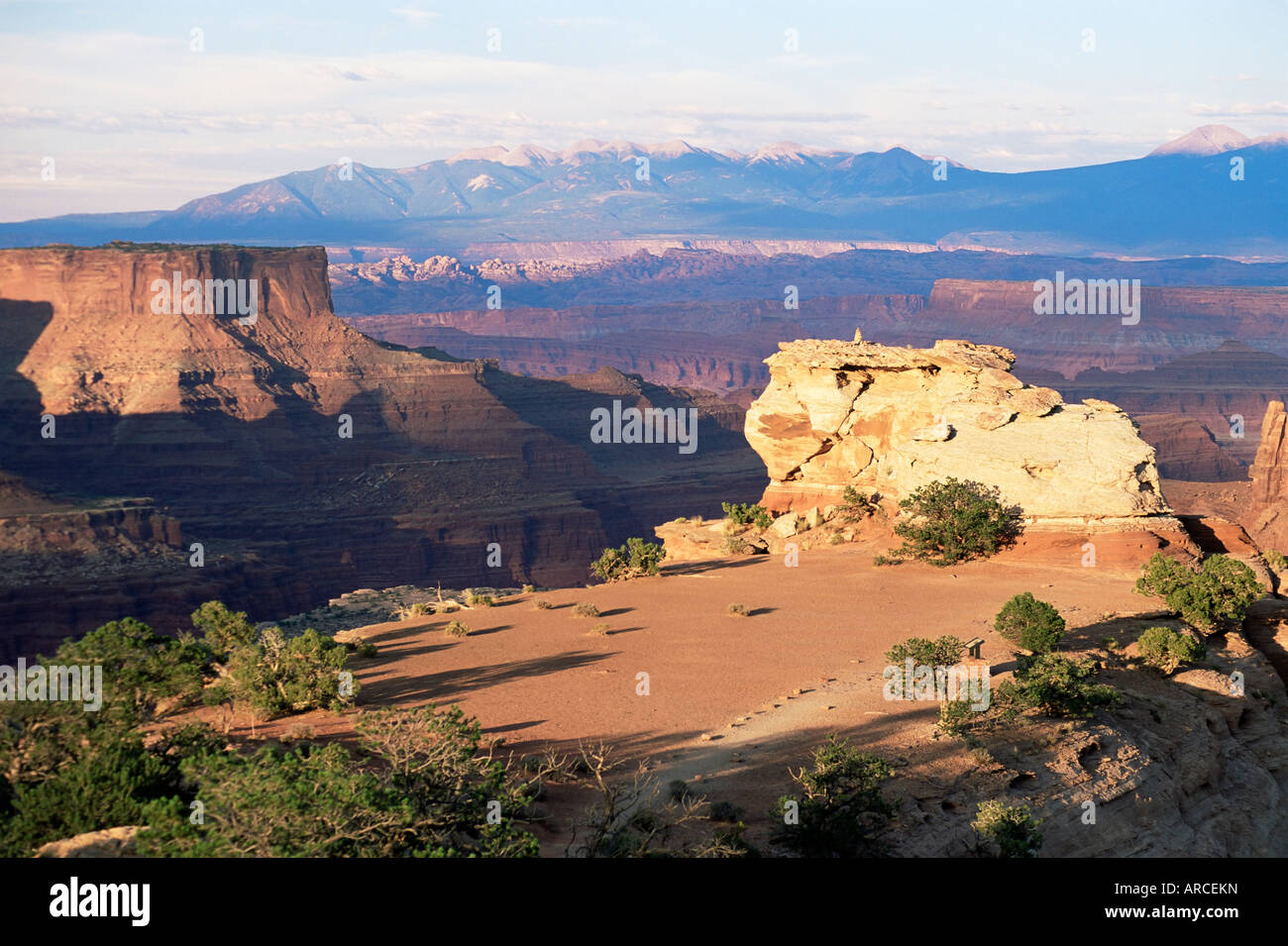 Island in the Sky, clifftop plateau below Shafer Canyon Overlook at sunset, Canyonlands National Park, Utah, USA, - Stock Image