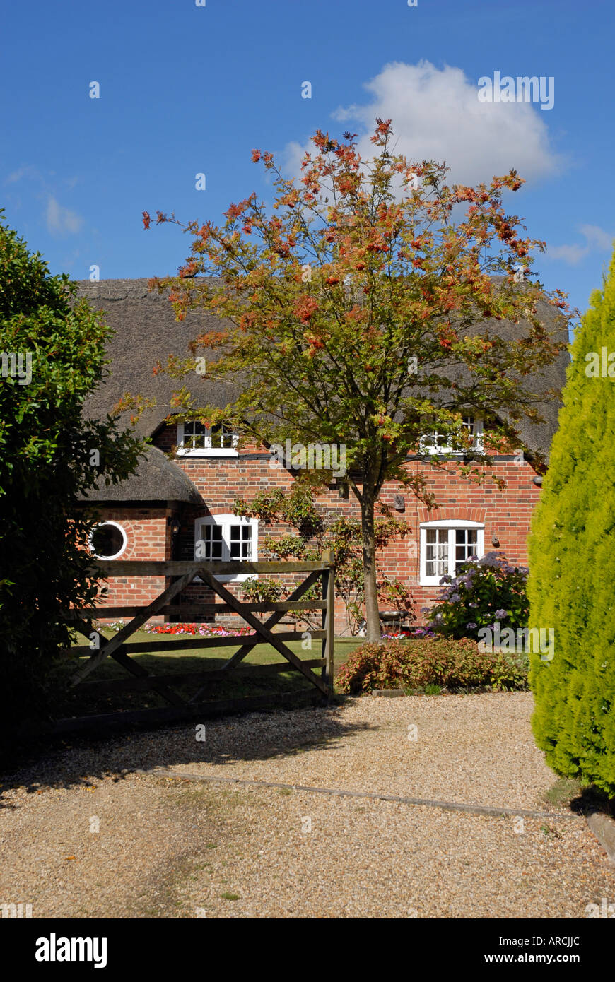 Gated entrance to thatched country cottage, brick built, with blue sky. Gravel drive. Tree in garden - Stock Image
