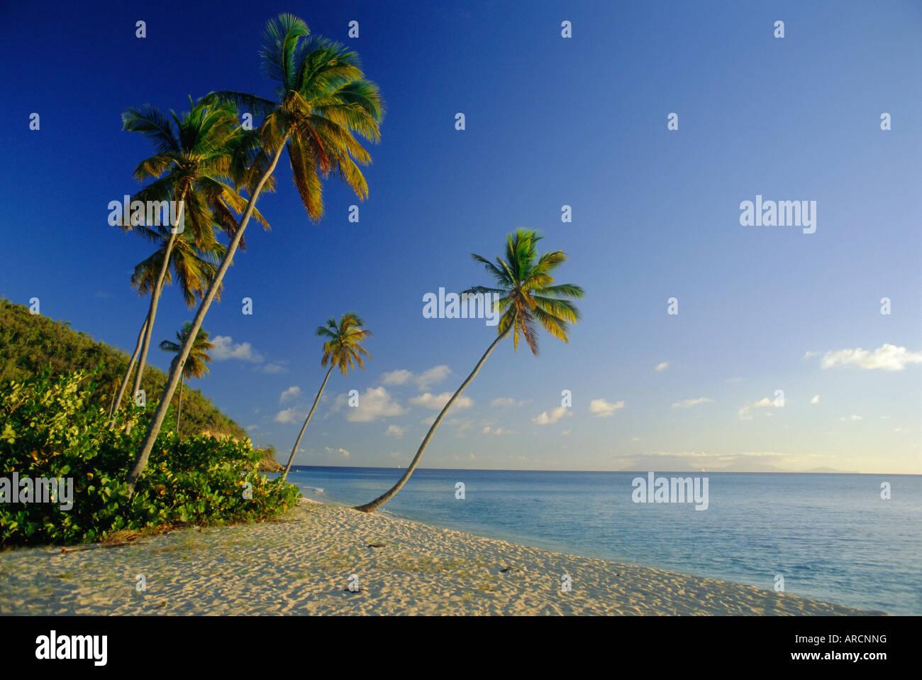 Darkwood Beach, Antigua, Caribbean, West Indies Stock Photo