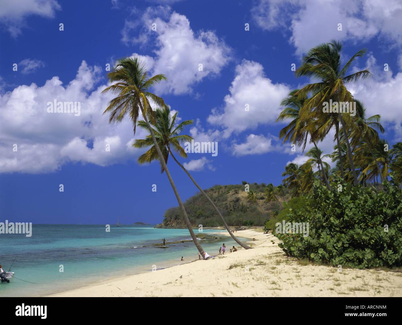 Darkwood Beach, Antigua, Leeward Islands, Caribbean, West Indies, Central America Stock Photo