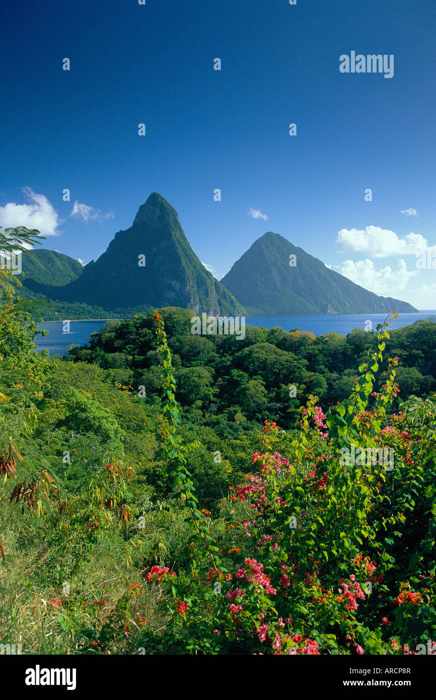The Pitons, St.Lucia, Caribbean - Stock Image
