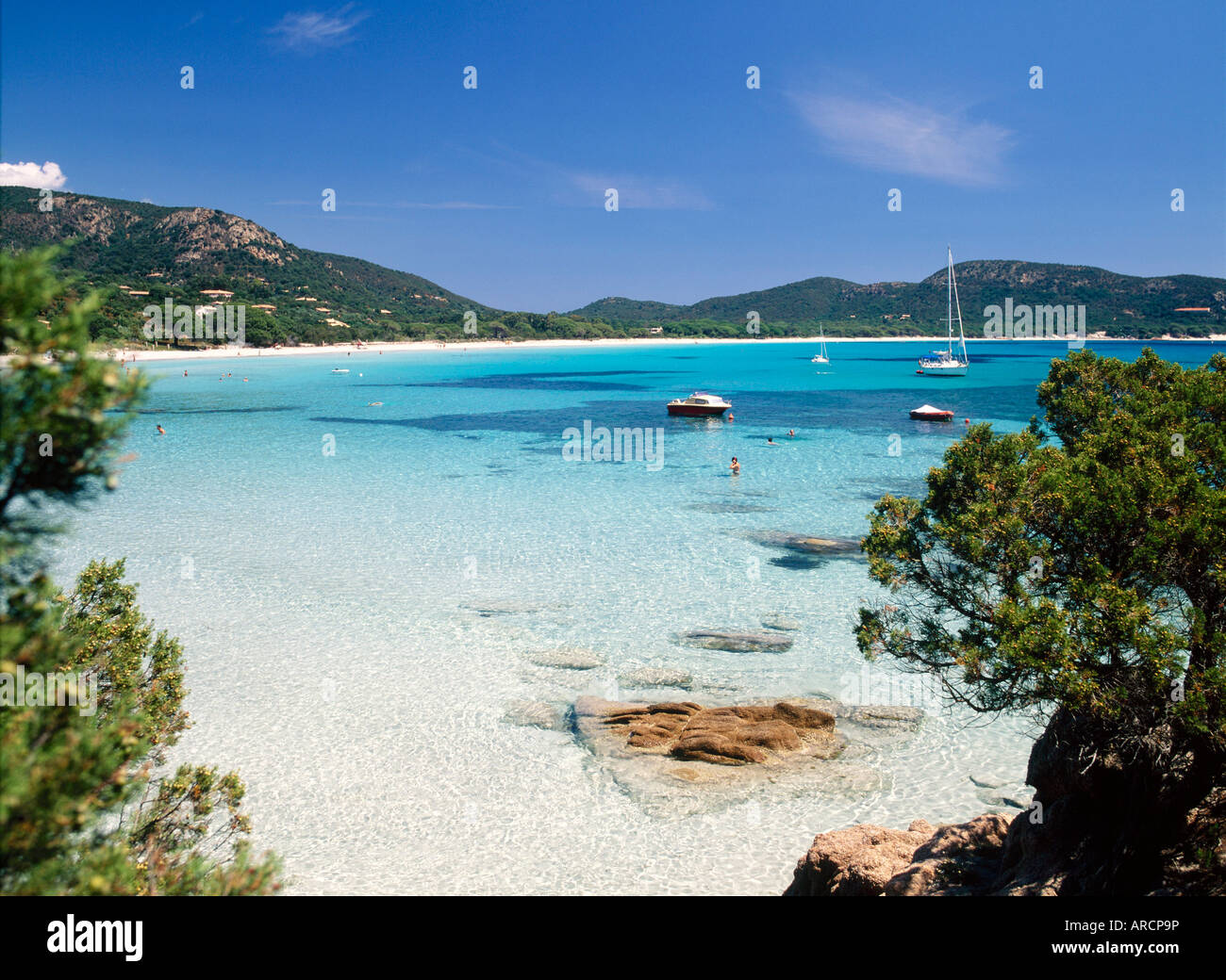 palombaggia beach porto vecchio corsica france stock photo 16013649 alamy. Black Bedroom Furniture Sets. Home Design Ideas