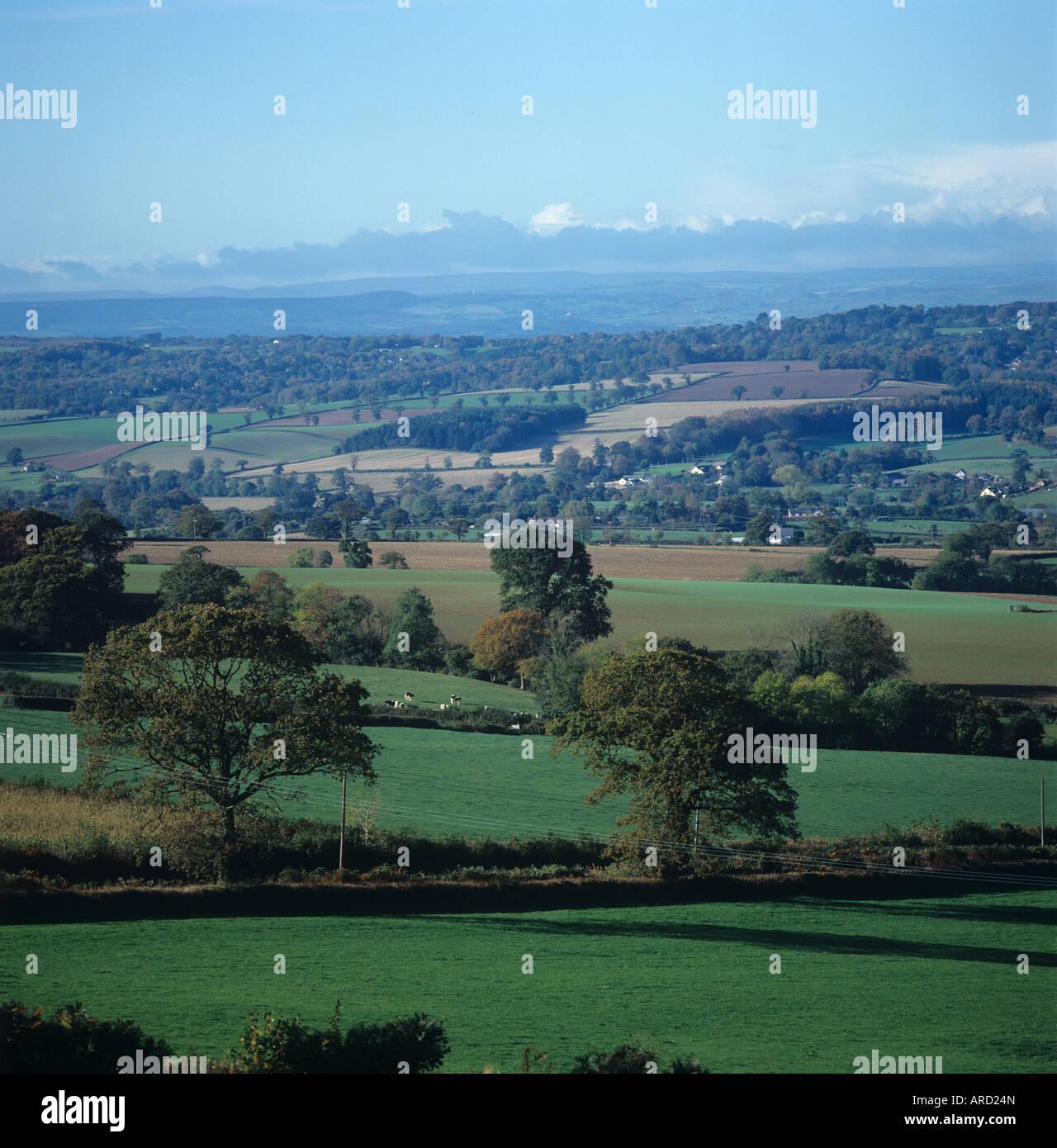 Mid Devon farmland in autumn pasture trees fallow fields buildings looking towards Dartmoor Stock Photo