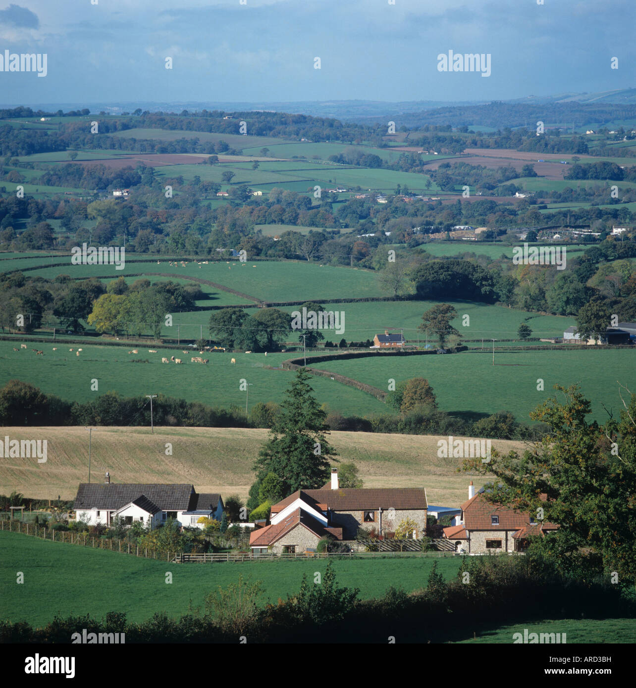 Mixed autumn Devon farmland with buildings and small fields - Stock Image
