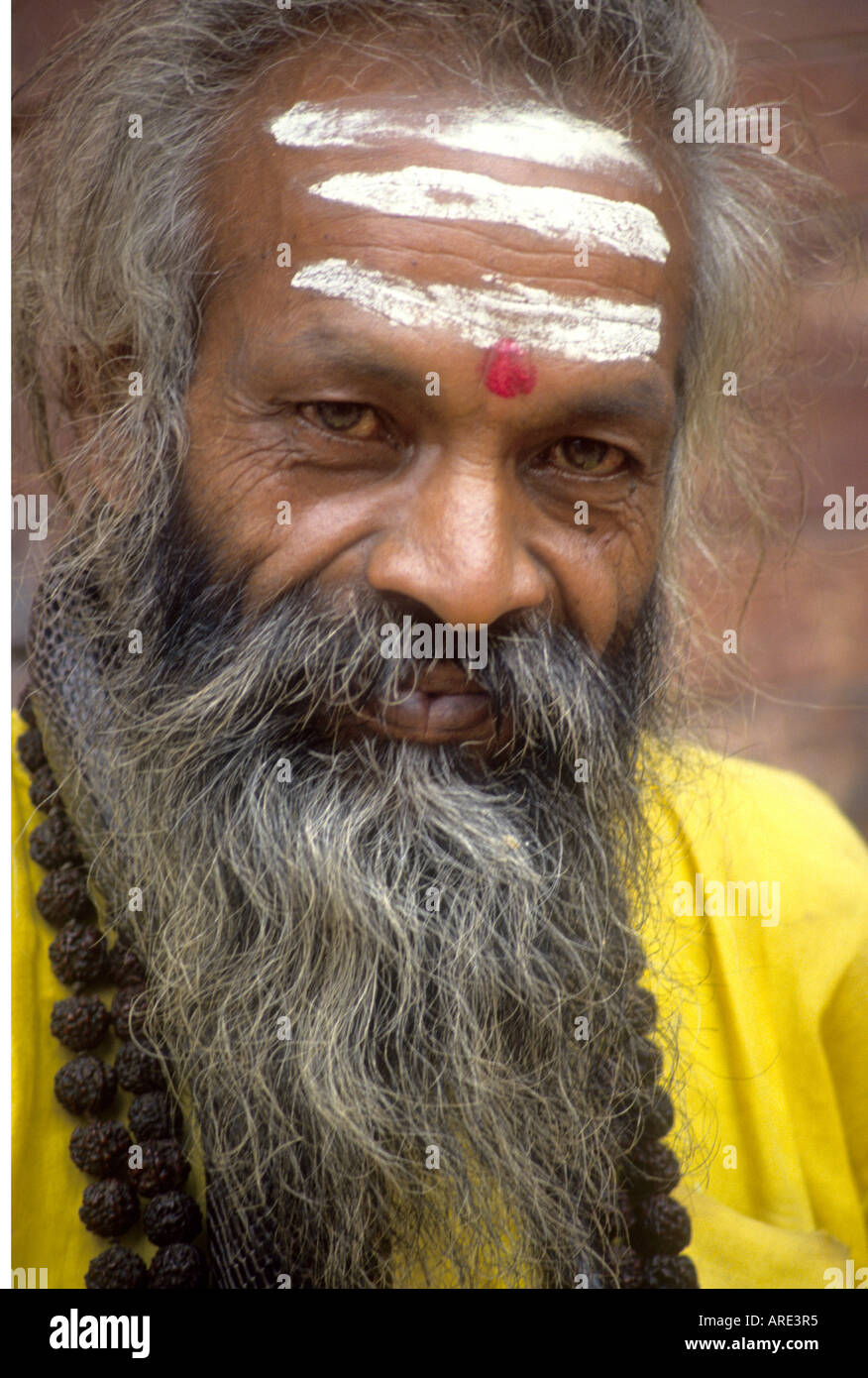 Smiling ochre robed Saddhu with painted face coils a snake round his neck while waiting for alms in India - Stock Image