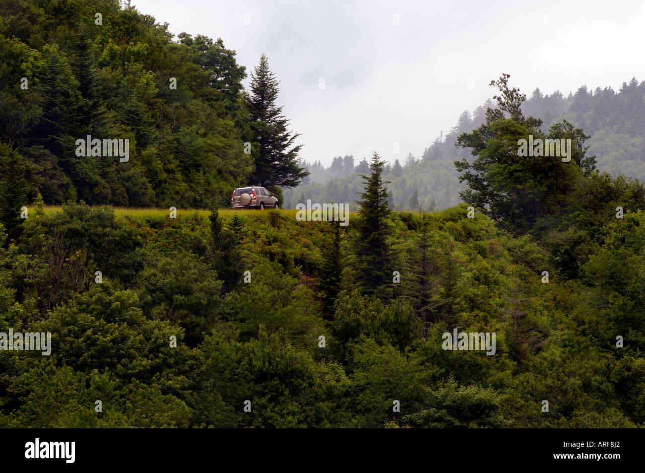 Honda CRV takes a curve on the scenic Blue Ridge Highway - Stock Image