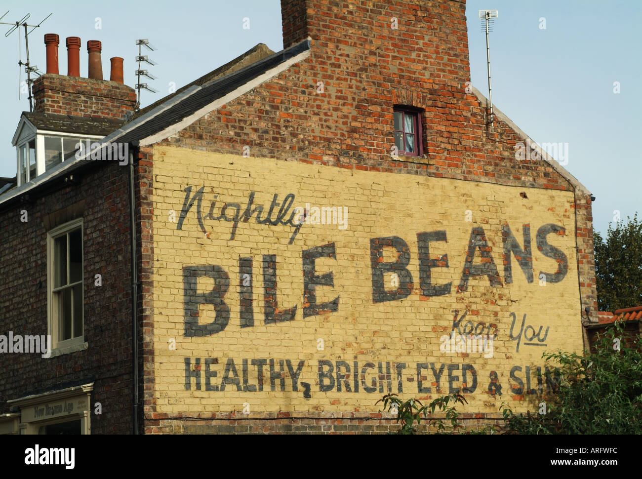 Old painted advert for Bile Beans on the end of a terraced house on Lord Mayor's Walk, York, England, UK - Stock Image