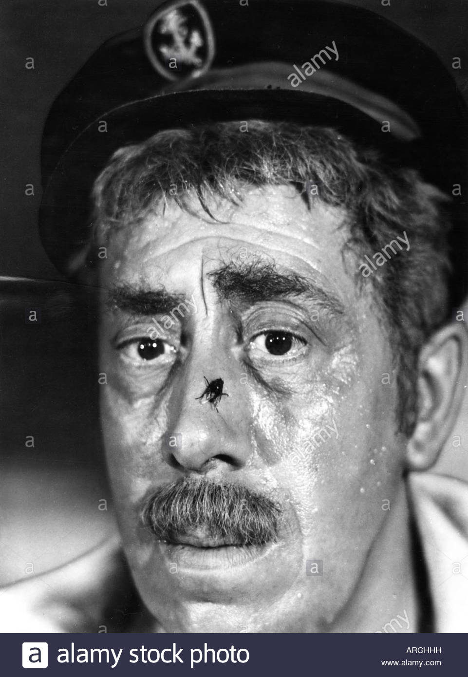 Fernandel, 8.5.1903 - 26.2.1971, French actor and singer, portrait, scene from movie, 'The Sheep Has Five Legs' - Stock Image