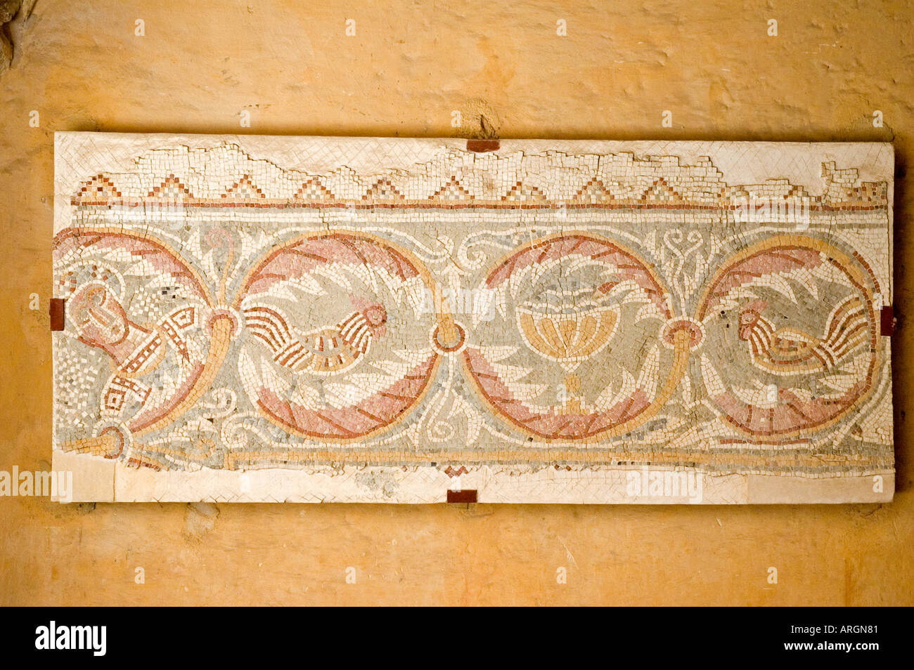 Mosaic fragments in the Church of the Virgin Mary, Madaba, Hashemite Kingdom of Jordan, Middle East. DSC_5342 - Stock Image