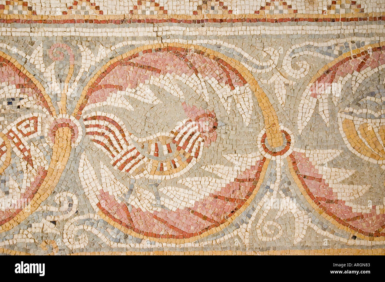 Mosaic fragments in the Church of the Virgin Mary, Madaba, Hashemite Kingdom of Jordan, Middle East. DSC_5344 - Stock Image