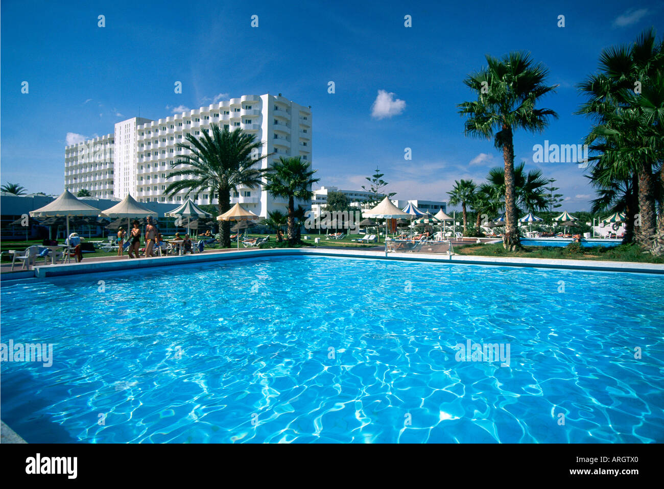 The water of the swimming pool surrounded by loungers and palm Stock ...