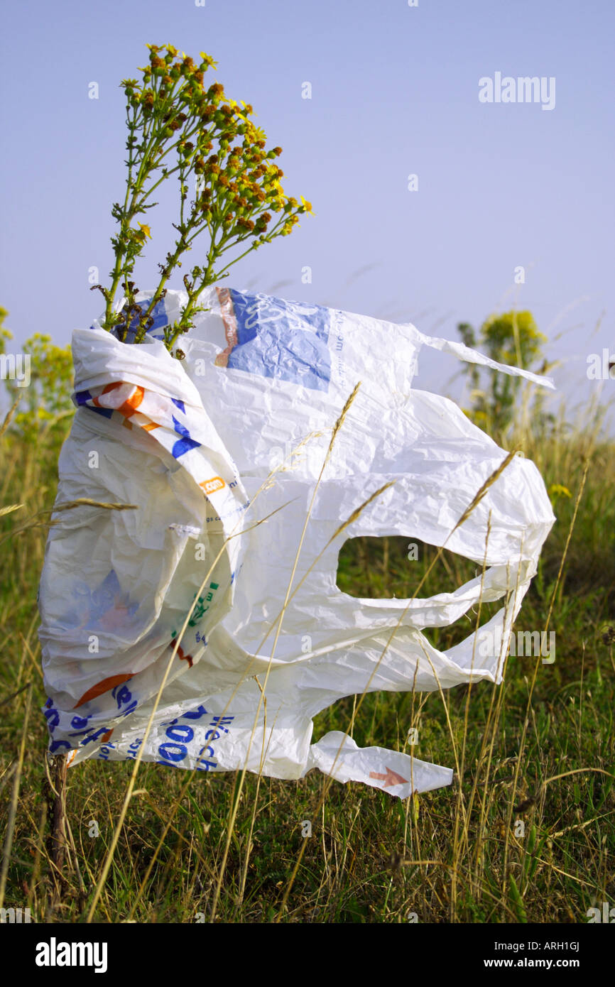 discarded carrier bag - Stock Image