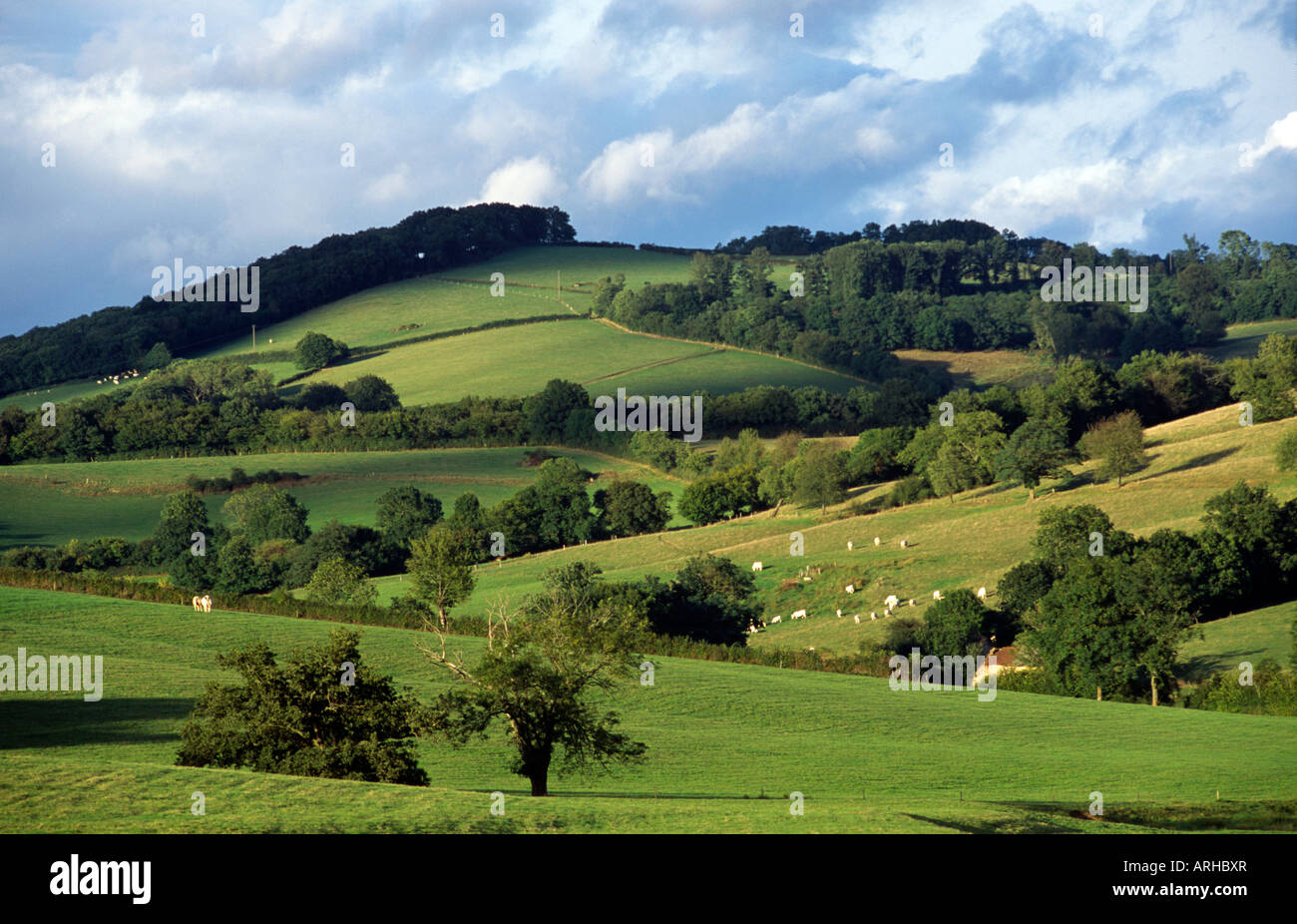 French Countryside In The Limoges Region Central France