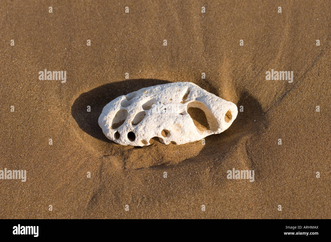 Eroded chalk stone on a sandy beach - Stock Image