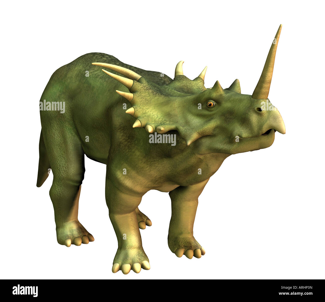 dinosaur Styracosaurus Stock Photo