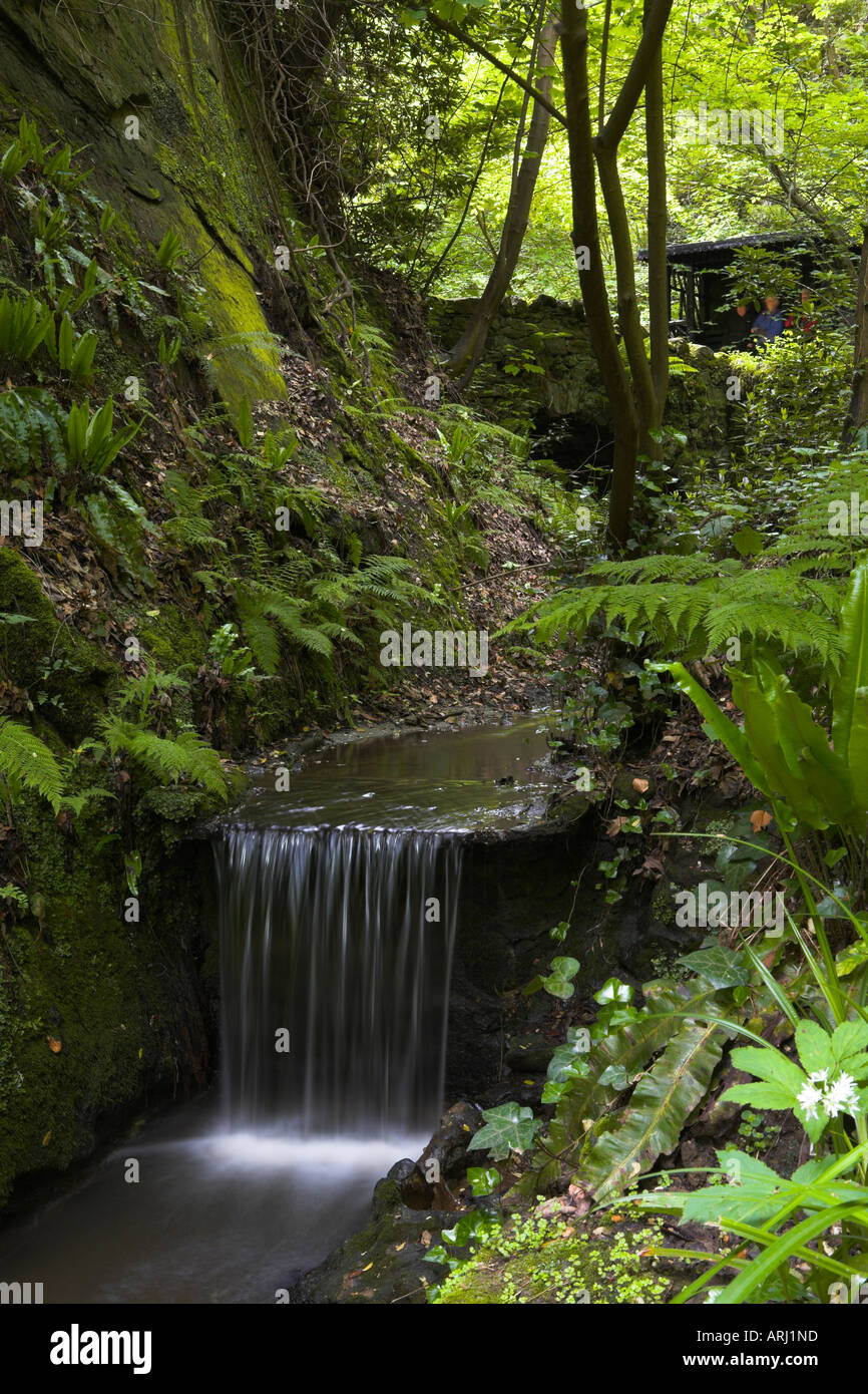 A small waterfall in the chine Shanklin - Stock Image