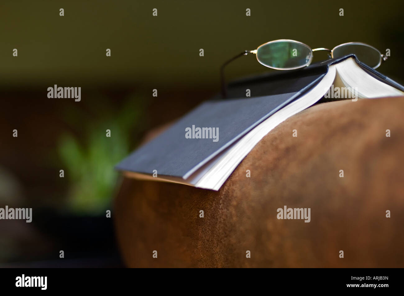 Page On The Left Stock Photos Images Alamy Laverda 1000 Motorcycle Engine Diagram Open Book And Reading Glasses Sofa Image