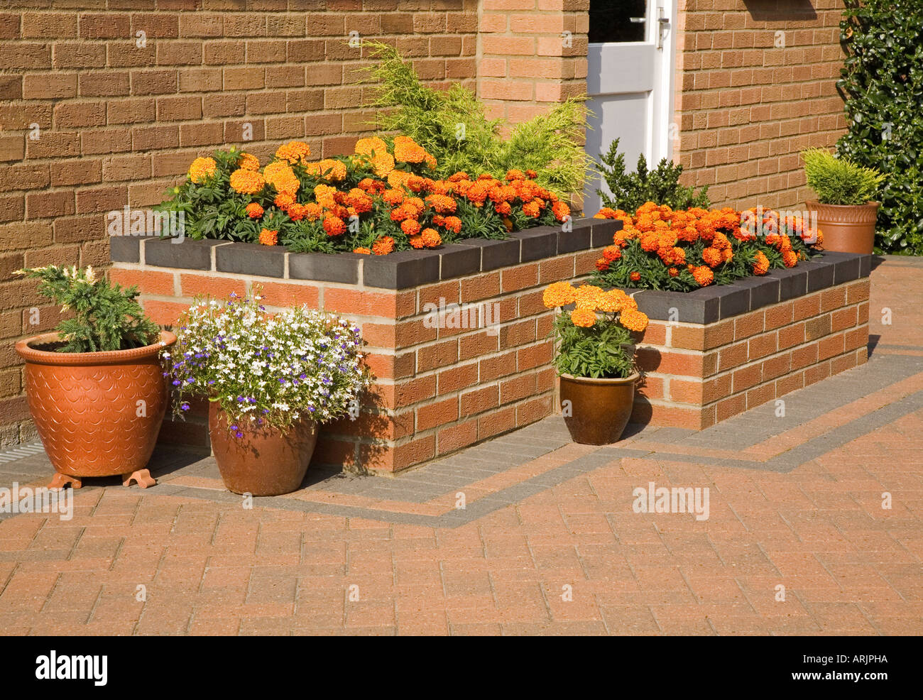 Summer flowers in a raised bed with pots on a patio - Stock Image