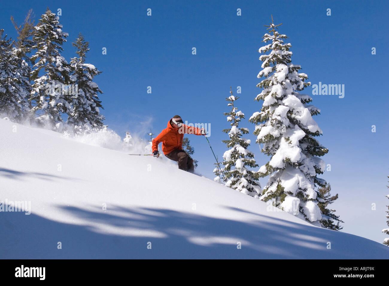 Side profile of a man skiing on snow, Lake Tahoe, California, USA Stock Photo