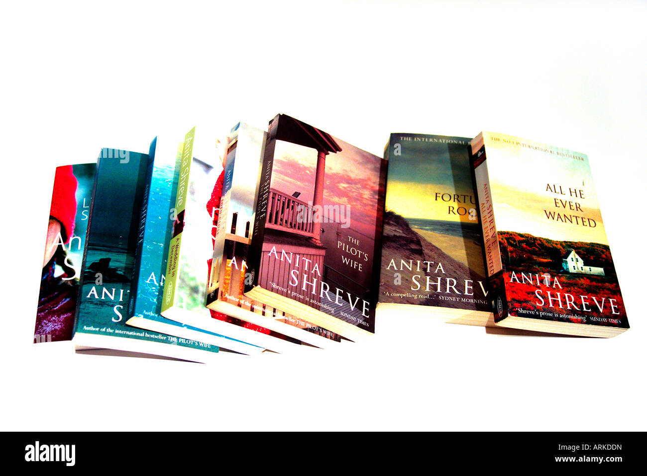 A selection of books by the author Anita Shreve. The eight books are All he ever Wanted, Fortunes Rocks, Eden Close, - Stock Image