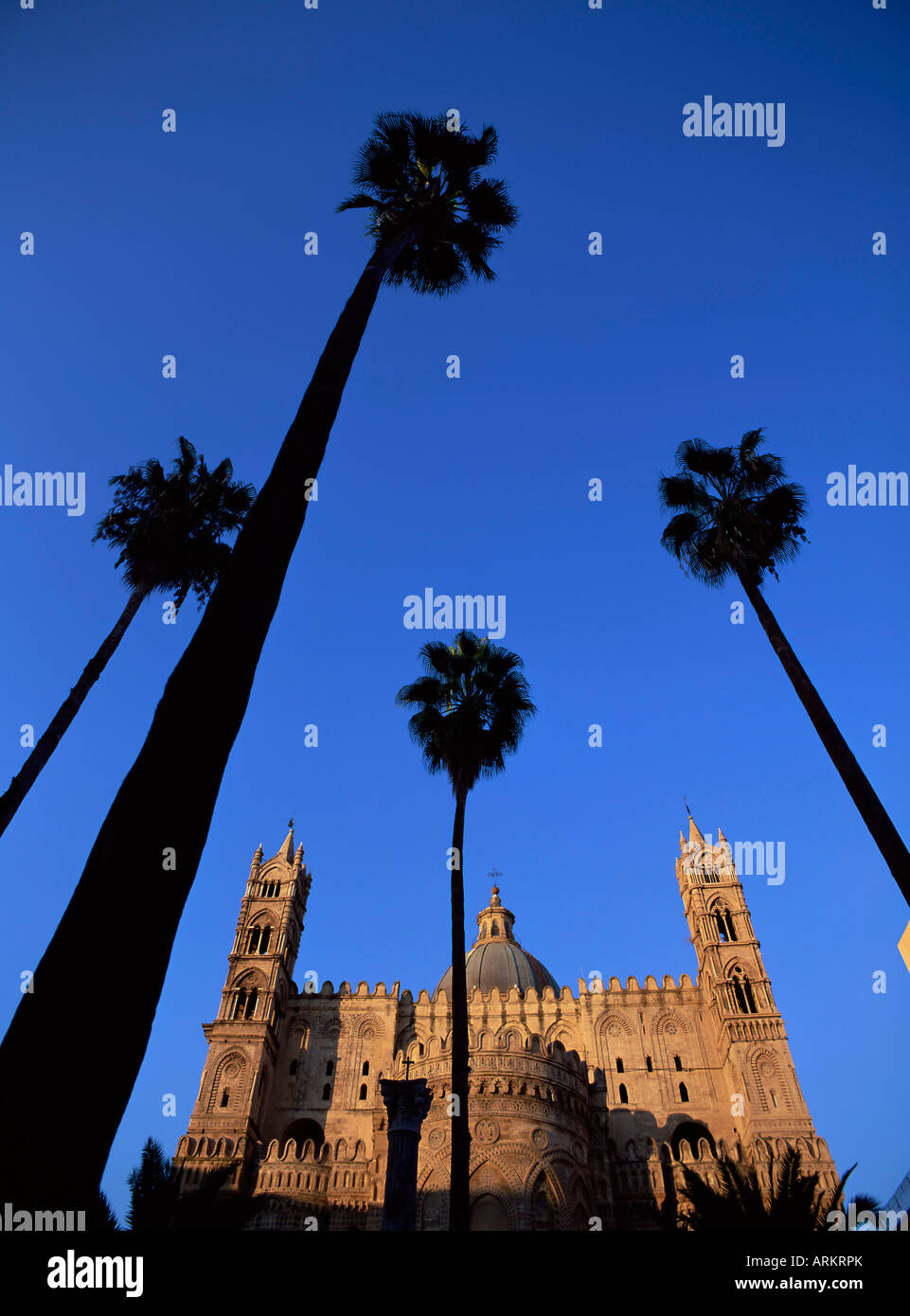 Christian cathedral and palm trees, Palermo, Sicily, Italy, Mediterranean, Europe Stock Photo