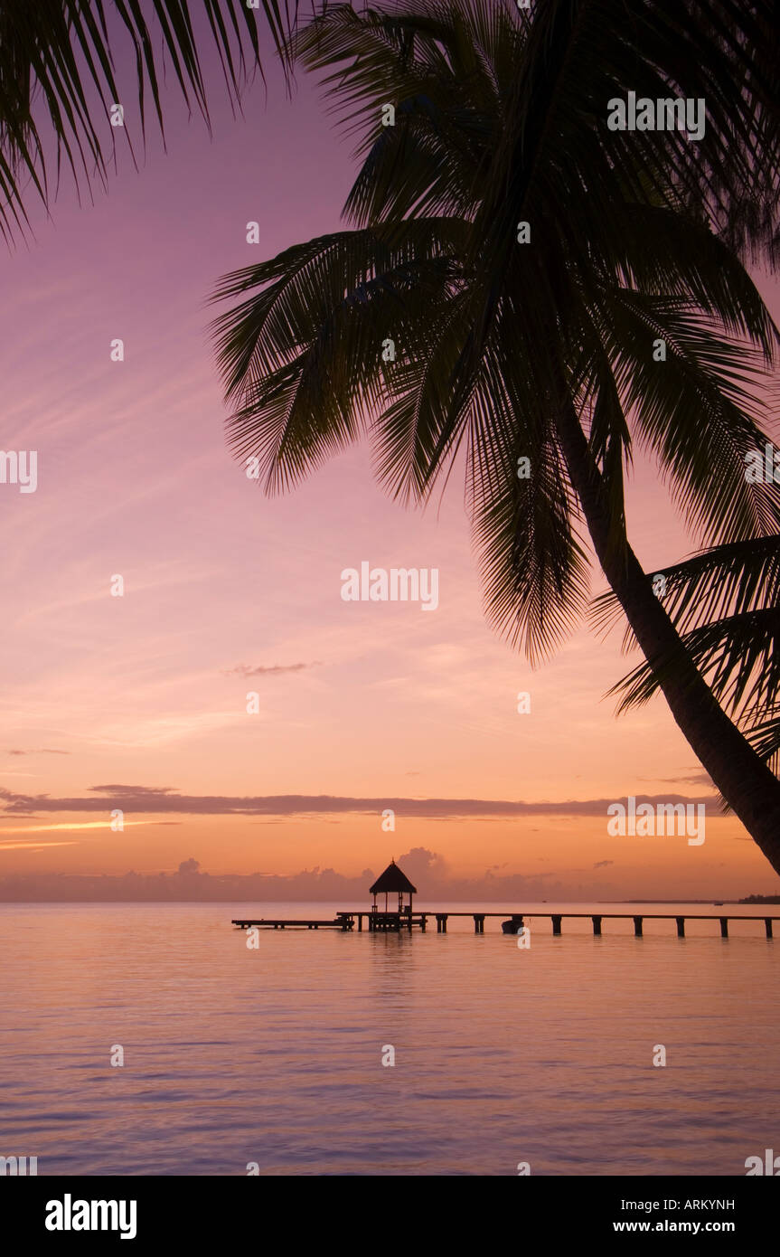 Rangiroa, Tuamotu Archipelago, French Polynesia, Pacific Islands, Pacific - Stock Image
