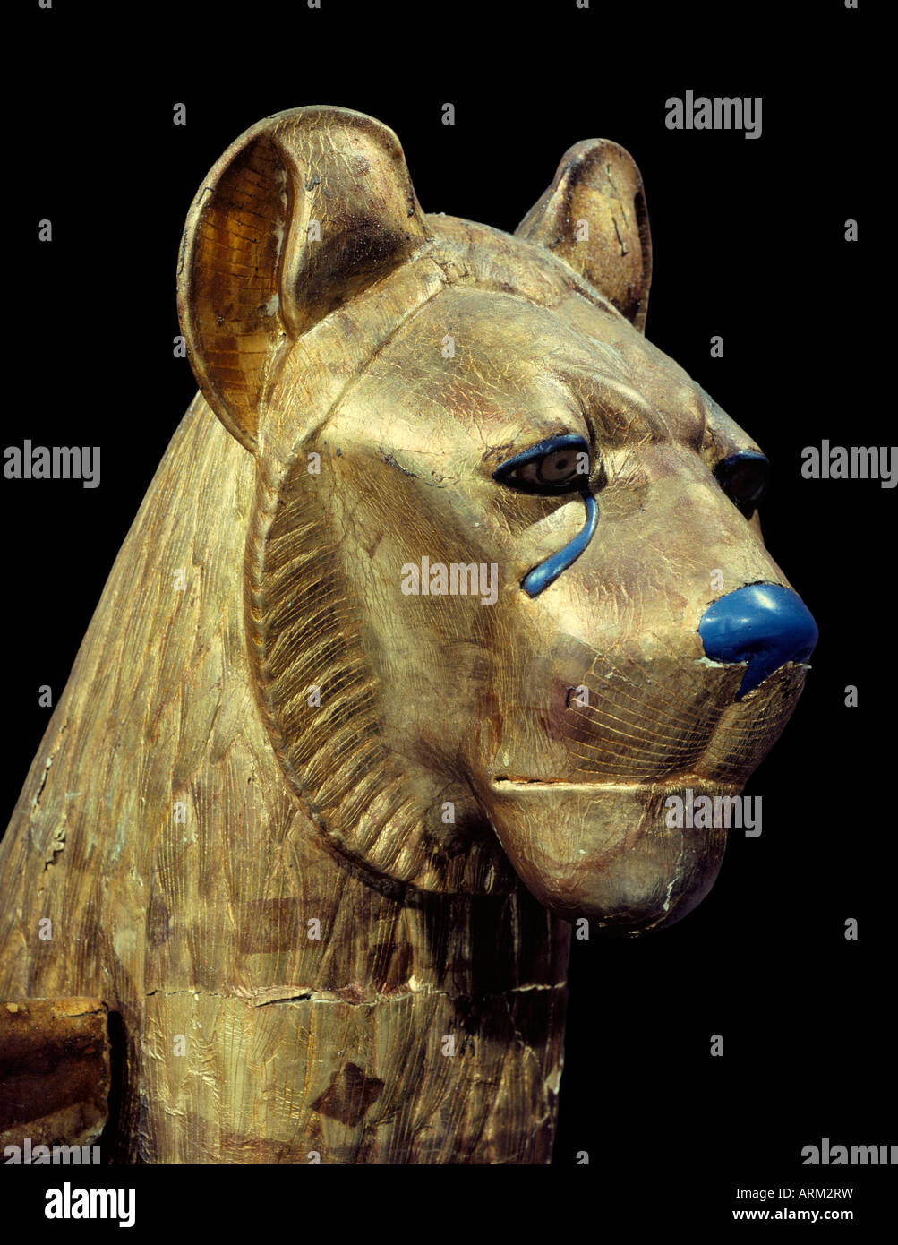 Head of a funerary couch in the form of a cheetah or lion, from the tomb of the pharaoh Tutankhamun - Stock Image