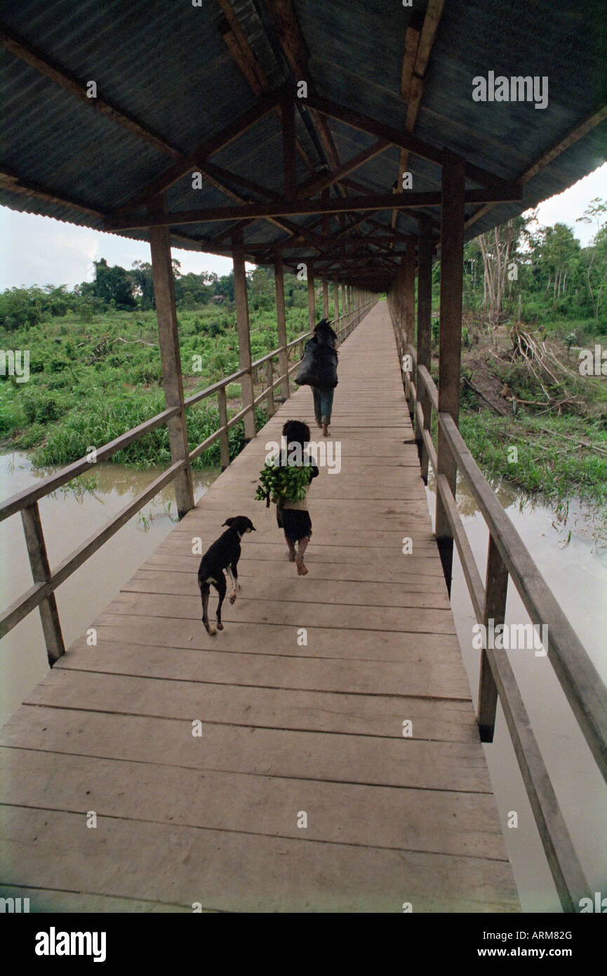 Dog follows boy carrying bananas in small community outside Iquitos, Amazon River, Peru, South America - Stock Image