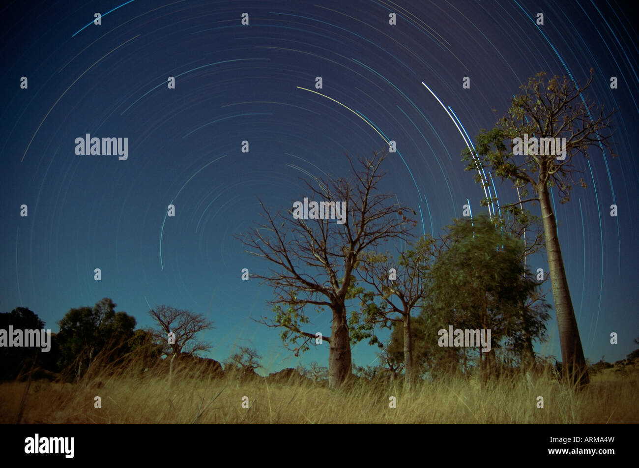 Star trails, Kimberley, Western Australia, Australia, Pacific - Stock Image