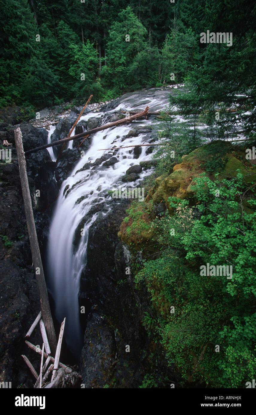 Coombs, Englishman river falls, Vancouver Island, British Columbia, Canada. - Stock Image