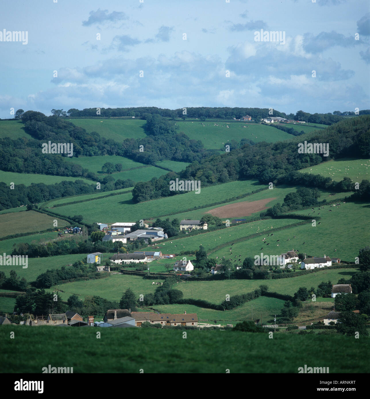 Mixed Devon valley farmland with village houses farms neat fields and woods near Sidmouth - Stock Image