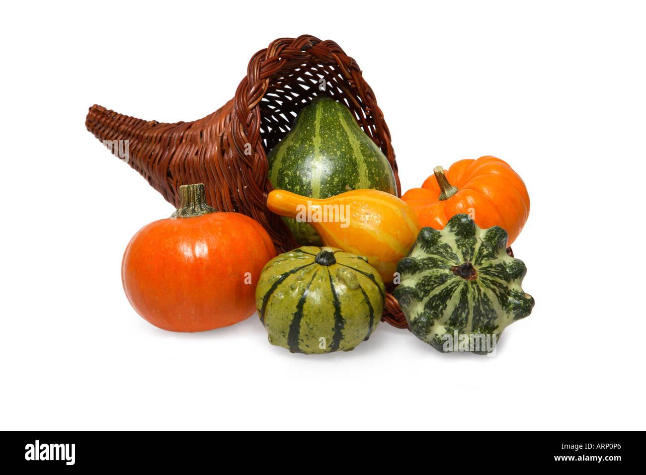 Cornucopia of Colorful Fall Gourds - Stock Image