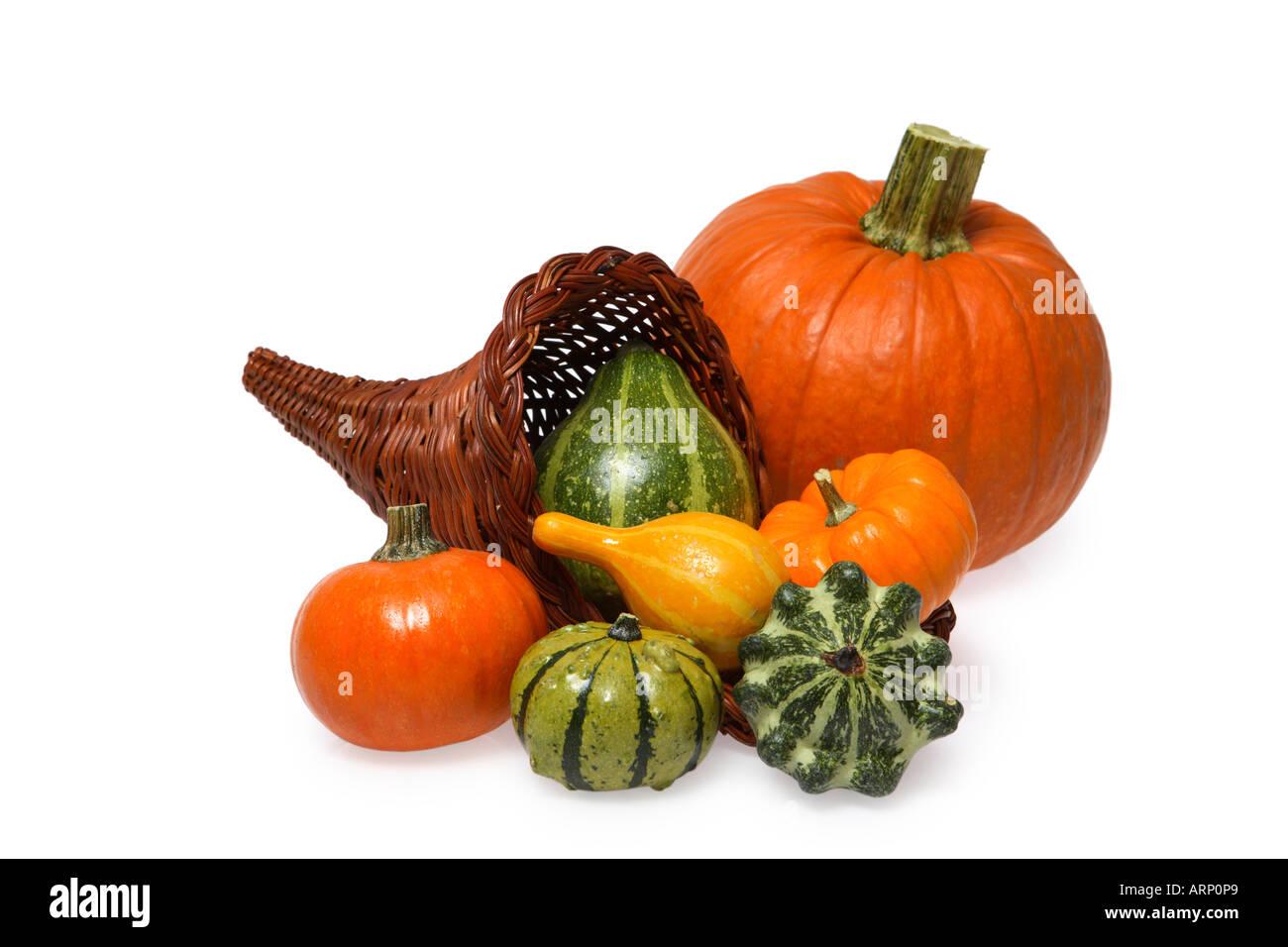 Cornucopia, Gourds and Pumpkin - Stock Image
