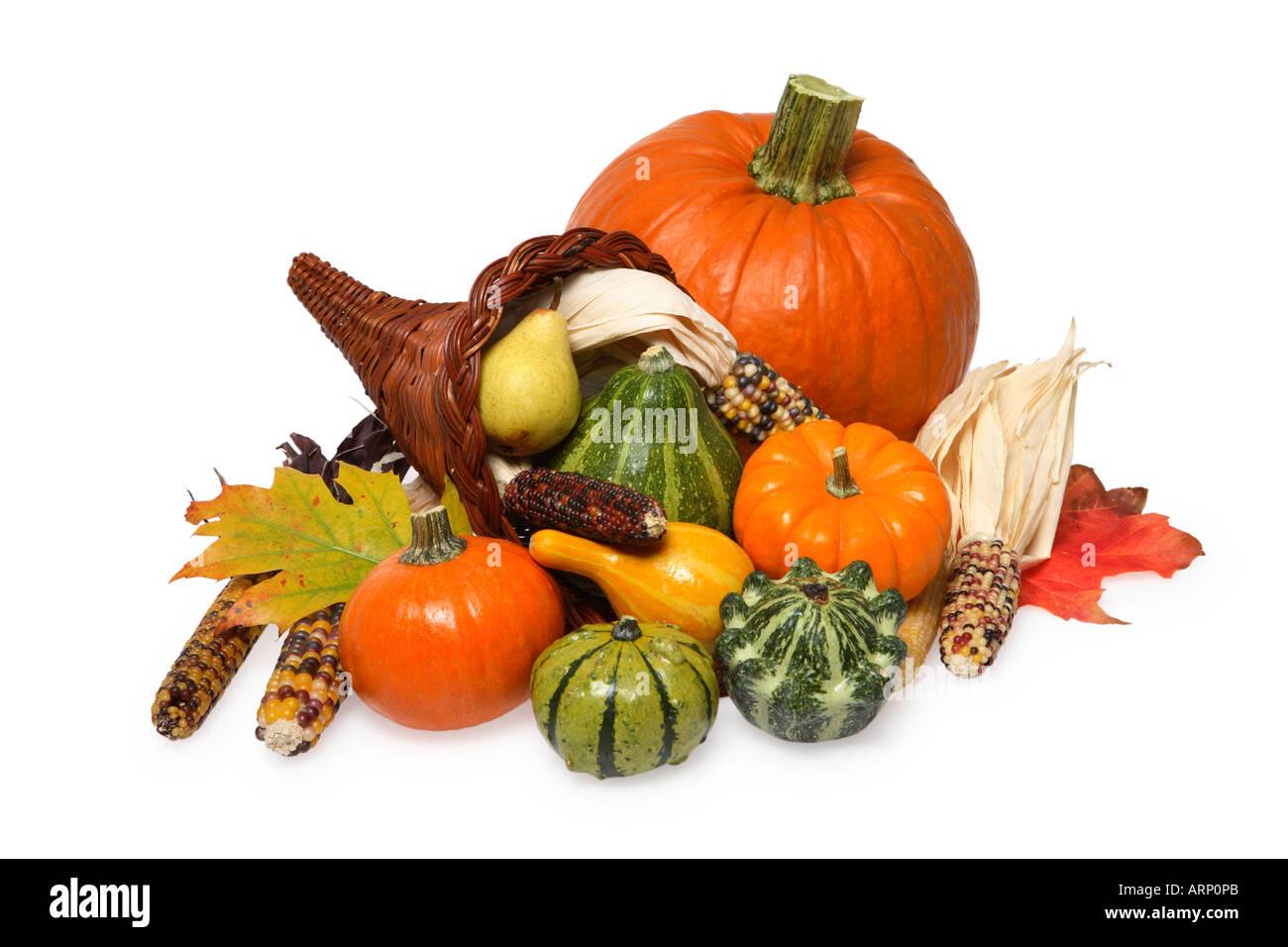 Cornucopia, Gourds and Pumpkin Seasonal Still Life - Stock Image