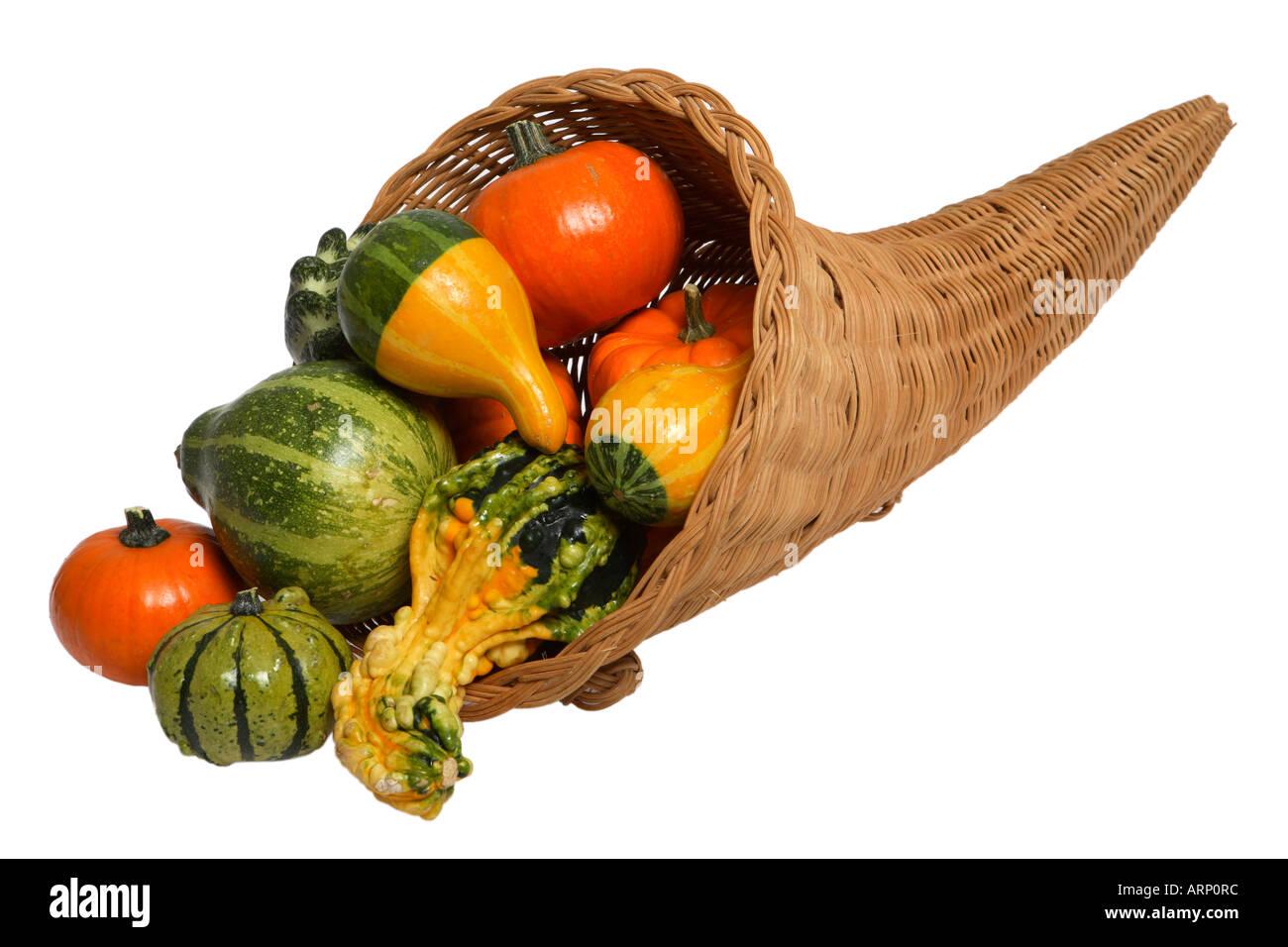 Cornucopia with Squash, Pumpkins and Gourds - Stock Image